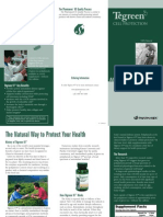 Tegreen Trifold Brochure