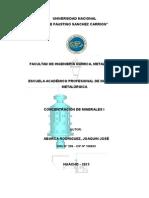 PRACTICA DE CONCENTRACION DE MINERALES I.docx