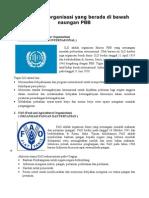 Organisasi Di Bawah Naungan PBB 1