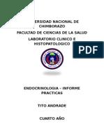 INFORME - ENDOCRINOLOGIA