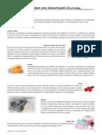 Vocabulário - Como Está o Seu Português