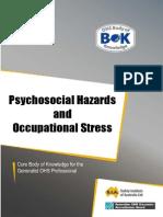19-hazard-psychosocial