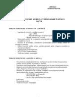 TEMATICA SOFER.doc