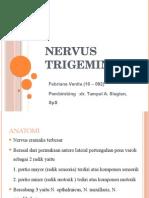 Nervus Trigeminus Fix[1]