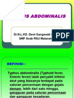Typhus Abdominalis