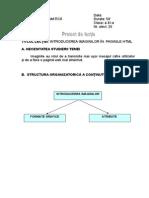 Proiect de Lectie-Informatica