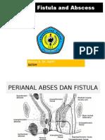 Perianal Fistula Abses
