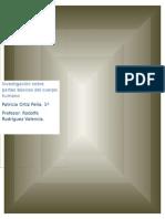 Informe Desarrollo Fisico y Salud