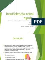 Insuficiencia Renal y Nefropatía Diabética Grupo 9 Subg 1