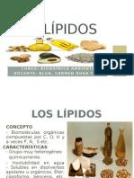 Clase 6 de Bioquimica Los Lípidos-2004-II (2)