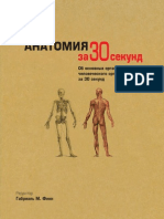 Finn G Red - Анатомия за 30 секунд