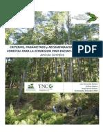 Biodiversidad en Bosques