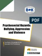 21-hazard-bullying- way 2012