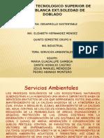 Servicios Ambientales Expo 1