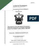 """Determinación de las Chlorophytas Scenedesmus y Pediastrum, encontradas en el estanque artificial del parque """"Los Colomos"""", Jalisco, México. 1998-1999."""