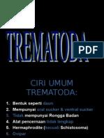 TREMATODA -usus