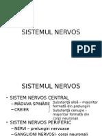 Histologie-lp12 Tesutul Nervos 2