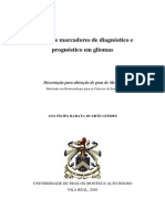 MsC Afbdguedes