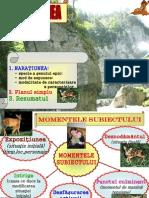 limba romana Rezumatul, Planul Simplu