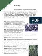 (Ebook - Ita - Botanica) Proprietà E Curiosità Di Fiori, Frutti, Erbe In Un Piccolo Dizionario (Doc)