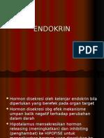 ENDOKRIN(1)