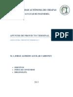 Apuntes Proy Terminal 2013.pdf