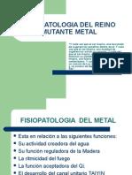 Fisiopatologia Del Reino Mutante Metal Clase 5