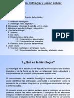 histología, citología y lesión celular
