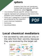 cell receptors.pptx