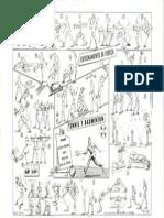 TENNIS Y BADMINTN.pdf