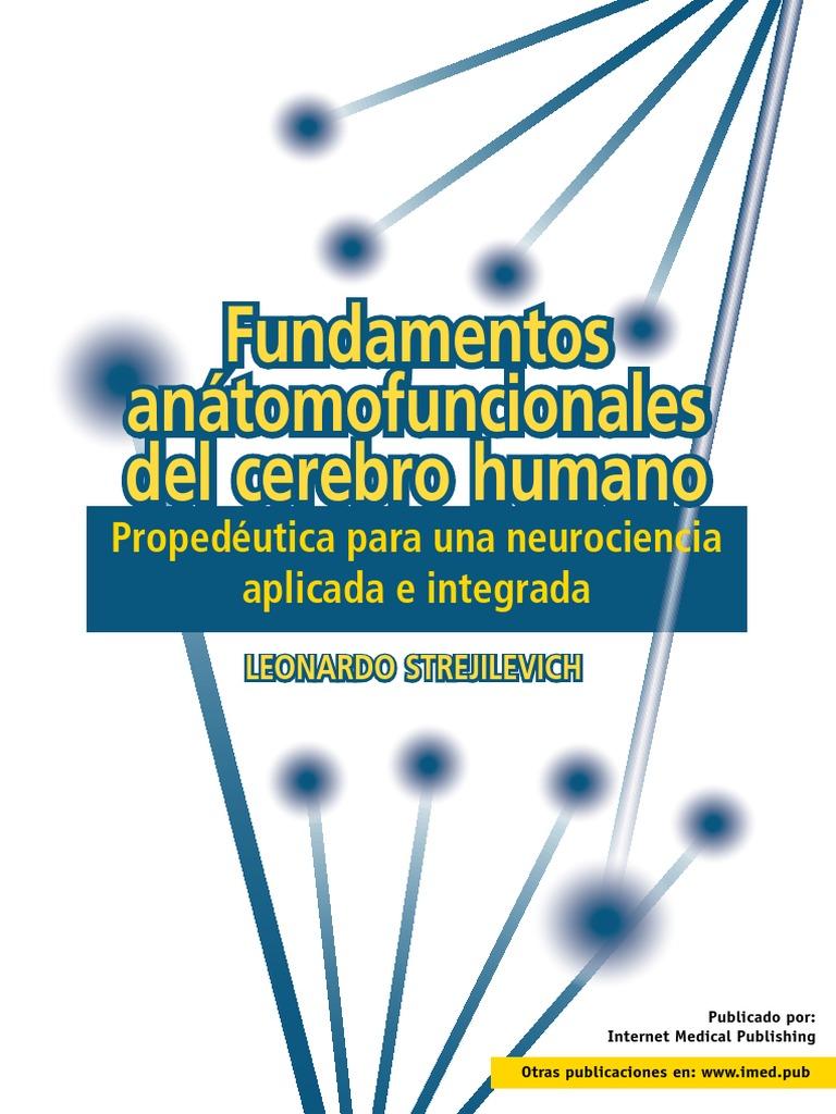 Fundamentos anátomofuncionales del cerebro humano. Propedéutica para ...