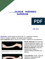 Clase Osteologia URP 2012