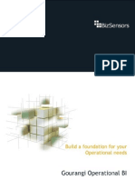 Operational BI Datasheet Gourangi 2010 - Bizsensors