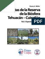 Plantas Mexicanas de La Biósfera Tehuacán Vol 1 (Nom Cient, Comun, Morfolo Imagenes & Usos) @30oK
