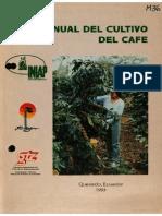 Cultivo  del  café.