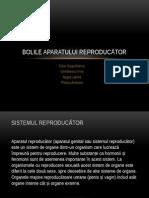 Bolile aparatuli reproducator