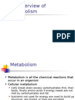 3 Metabolism of Carbohydrates