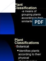 Plant Classification Darrin Holle