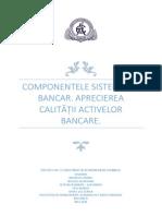 Componentele Sistemului Bancar. Aprecierea Calitatii Activelor Bancare