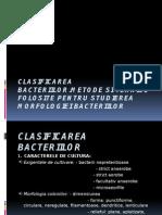 CLASIFICAREA BACTERIILOR