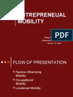 Entrepreneurial Mobility-