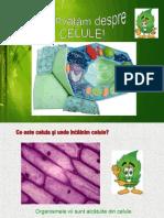 celula_vegetala