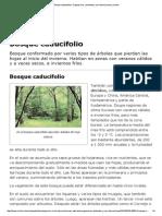 Bosque Caducifolio _ Organismos, Ambiente y Sus Interacciones _ Icarito