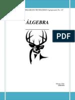 Apuntes Algebra 2014-2015