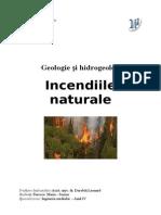 Incendiile Naturale Proiect
