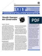 Youth Gangs — an overview (OJJDP)