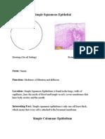 anatomyhistologybooklet