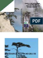 Padurile de pin negru de Banat (Pinus nigra banatica) sit Natura 2000