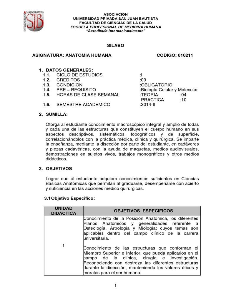 Excepcional Anatomía Hechos Divertidos Bosquejo - Imágenes de ...