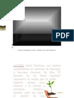 7 Semillas resumen principal.docx
